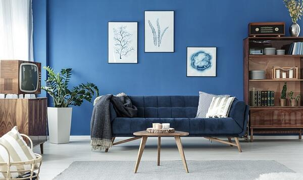 Blue living room with blue velvet sofa.